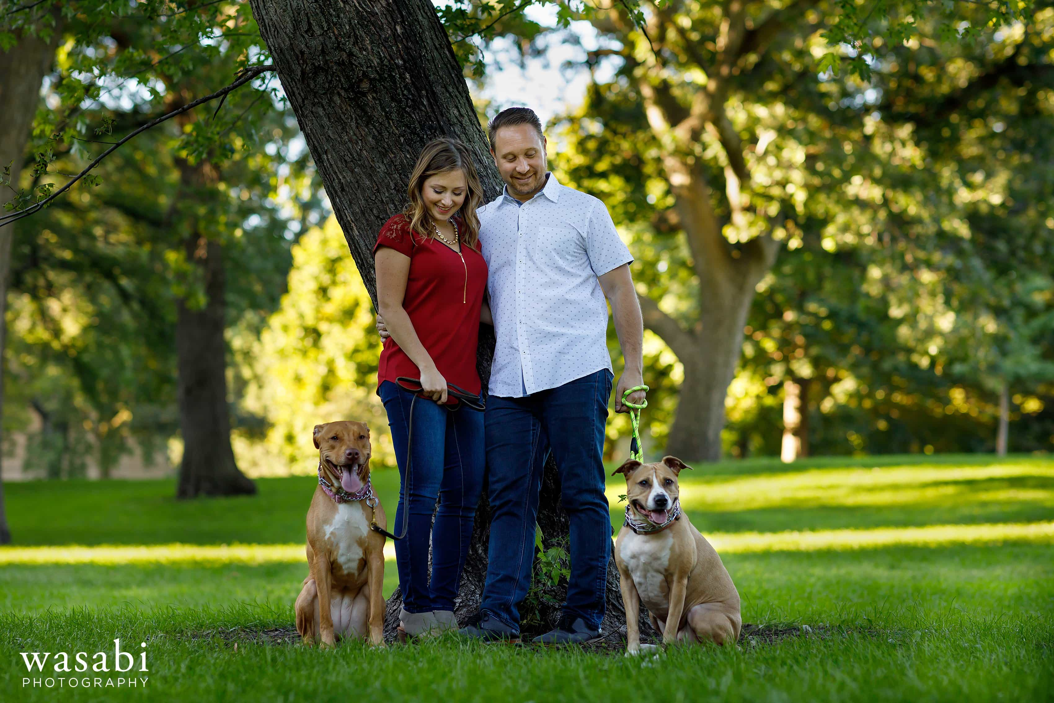Couple poses with their dogs for Lincoln Park Engagement photos in Chicago