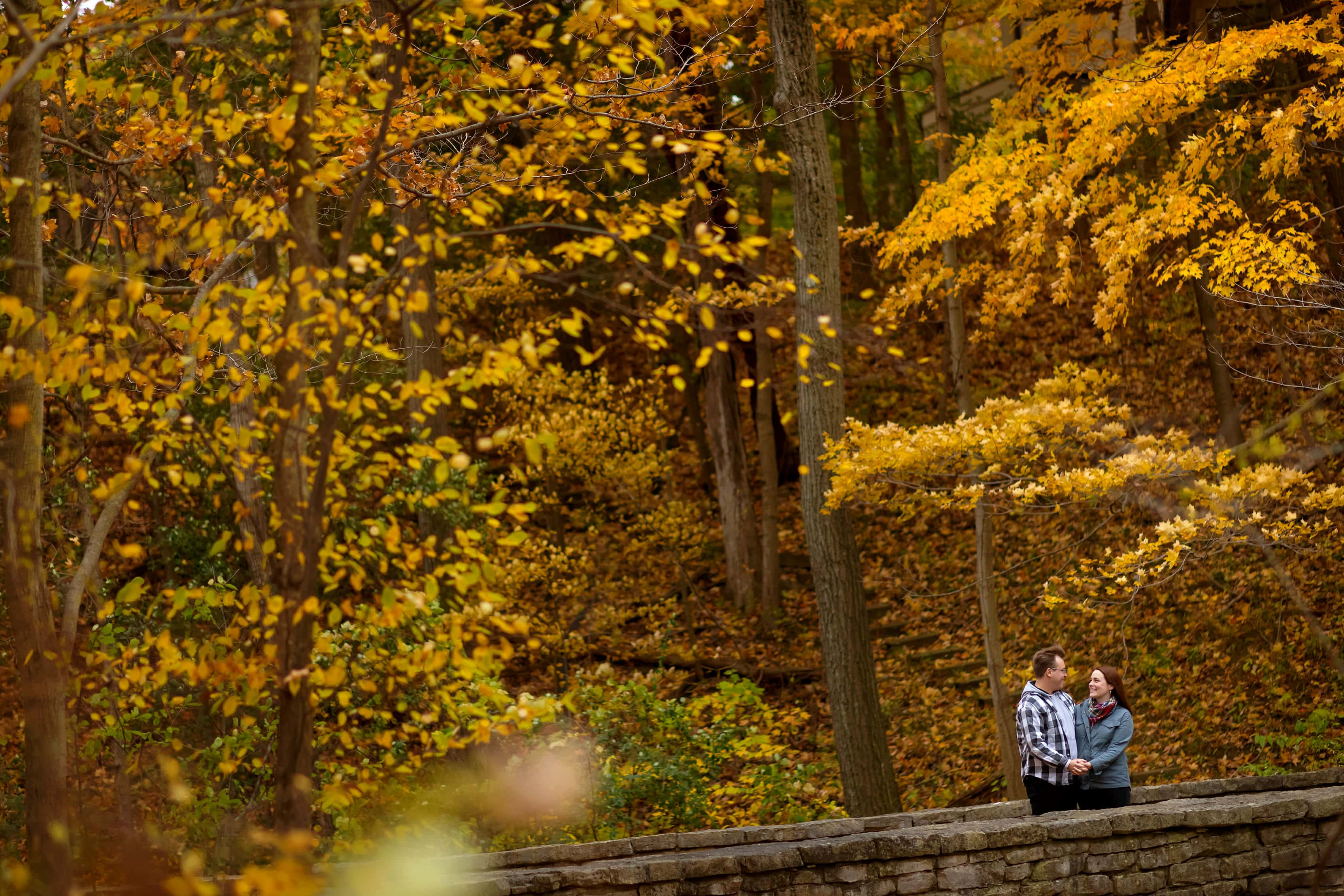 couple holds hands on bridge with lots of yellow leaves in the background during engagement session at Rosewood Park in Highland Park, Illinois