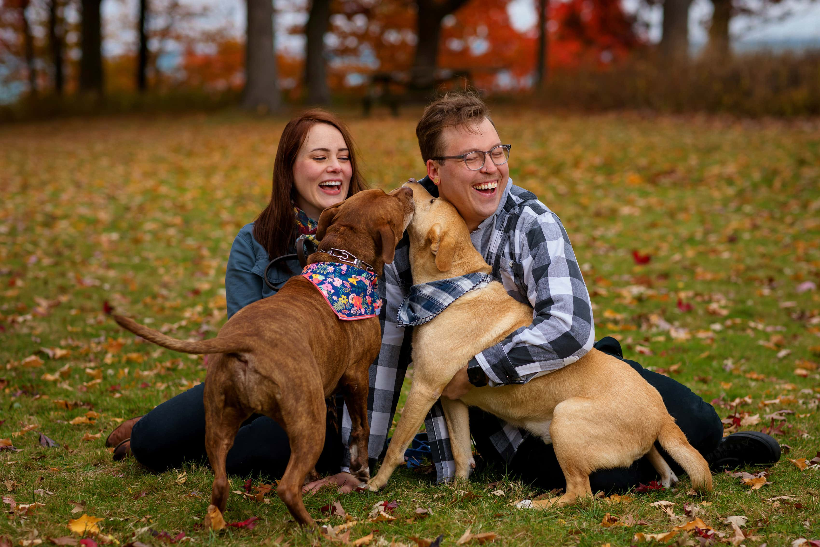 couple plays with their dogs with colorful trees in the background during engagement session at Rosewood Park in Highland Park, Illinois