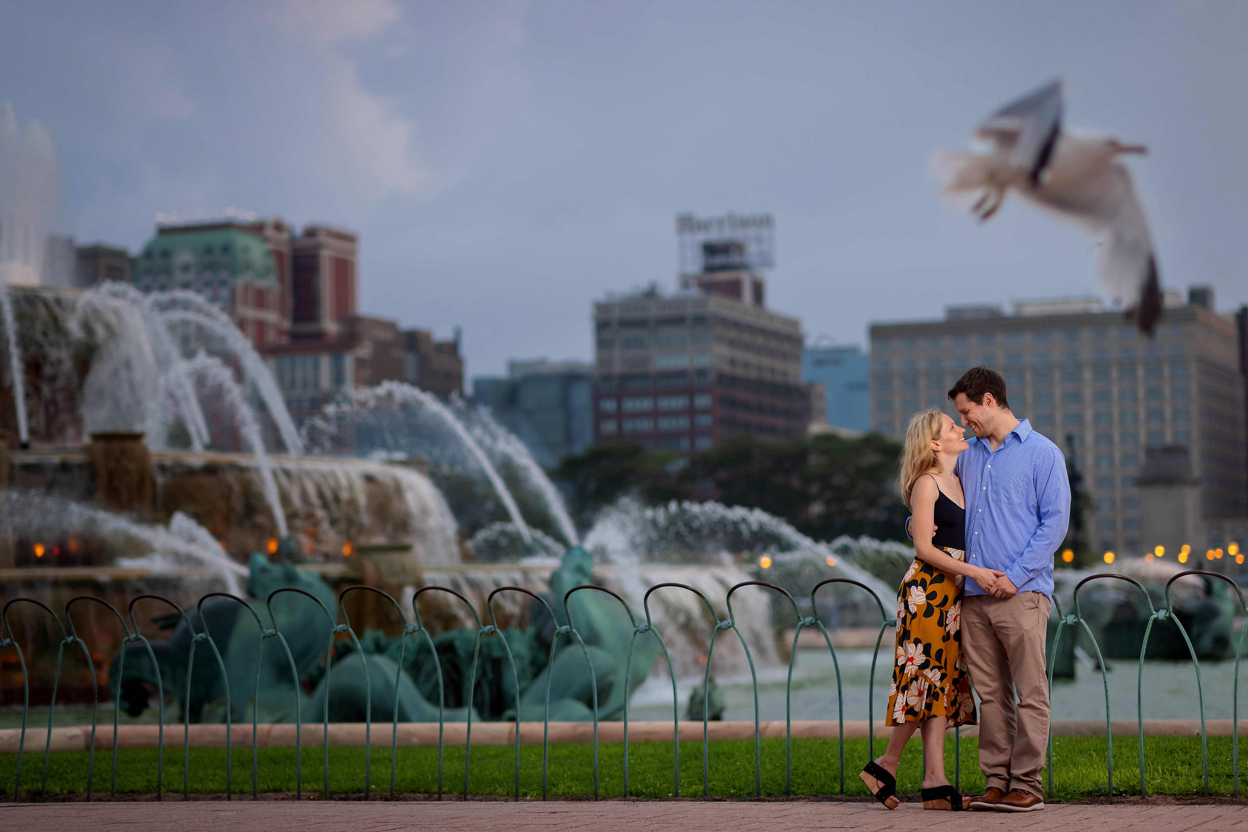 Couple poses for engagement photos in front of Buckingham Fountain in Grant Park with a seagull flying by in the foreground