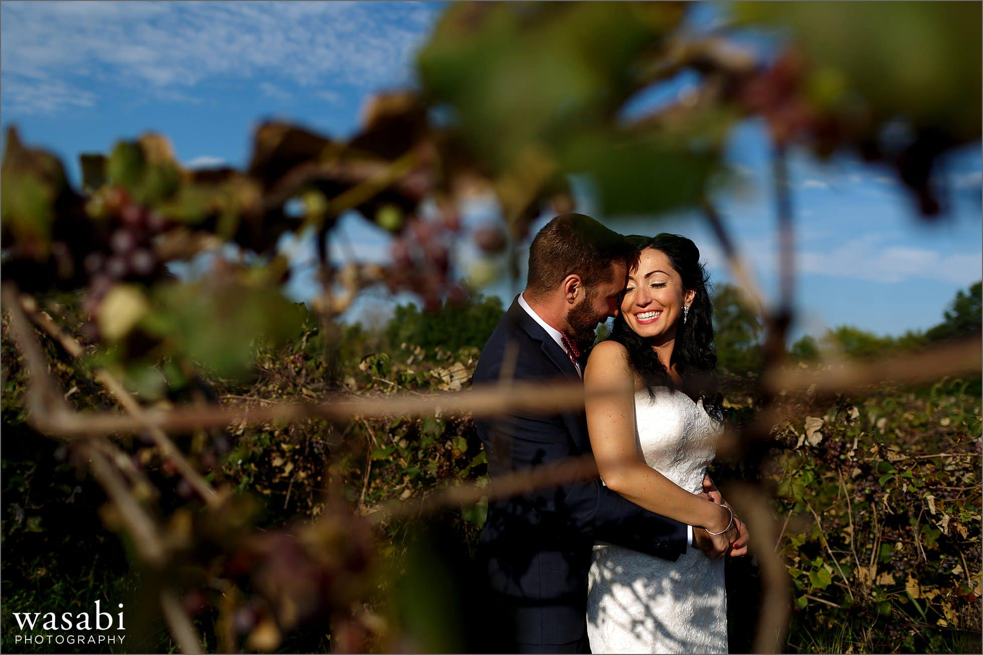 willow harbor vineyards winery portraits