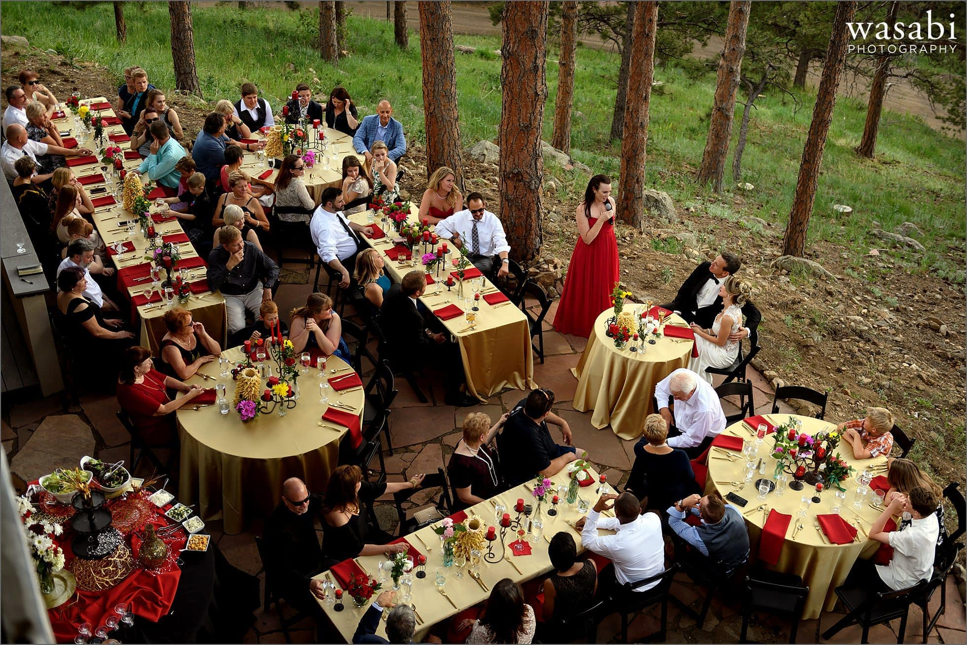 maid of honor toasts the couple during their home wedding reception on lookout mountain in Golden Colorado