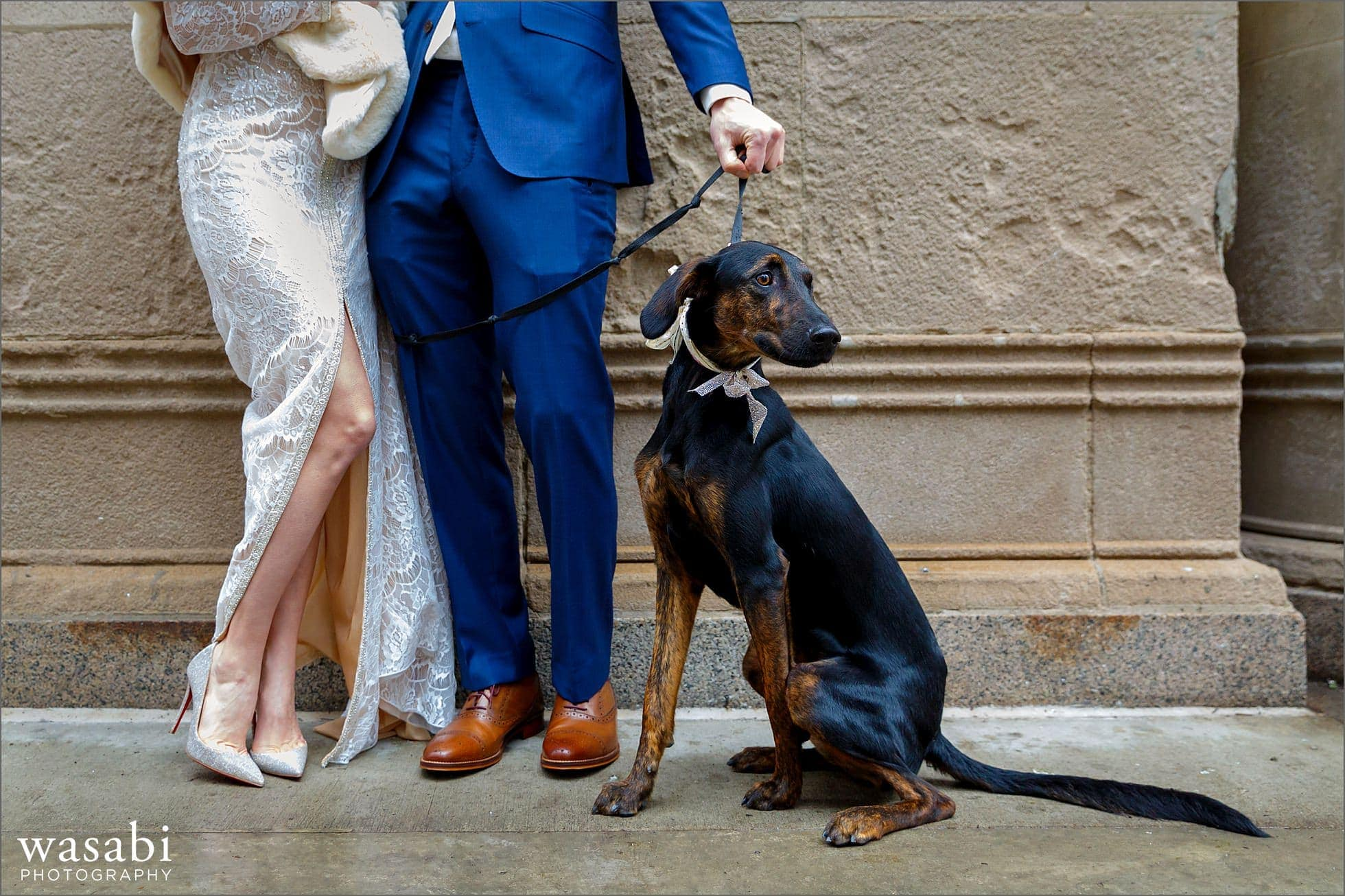 bride and groom pose with their dog for Civic Opera Building wedding portraits in Chicago