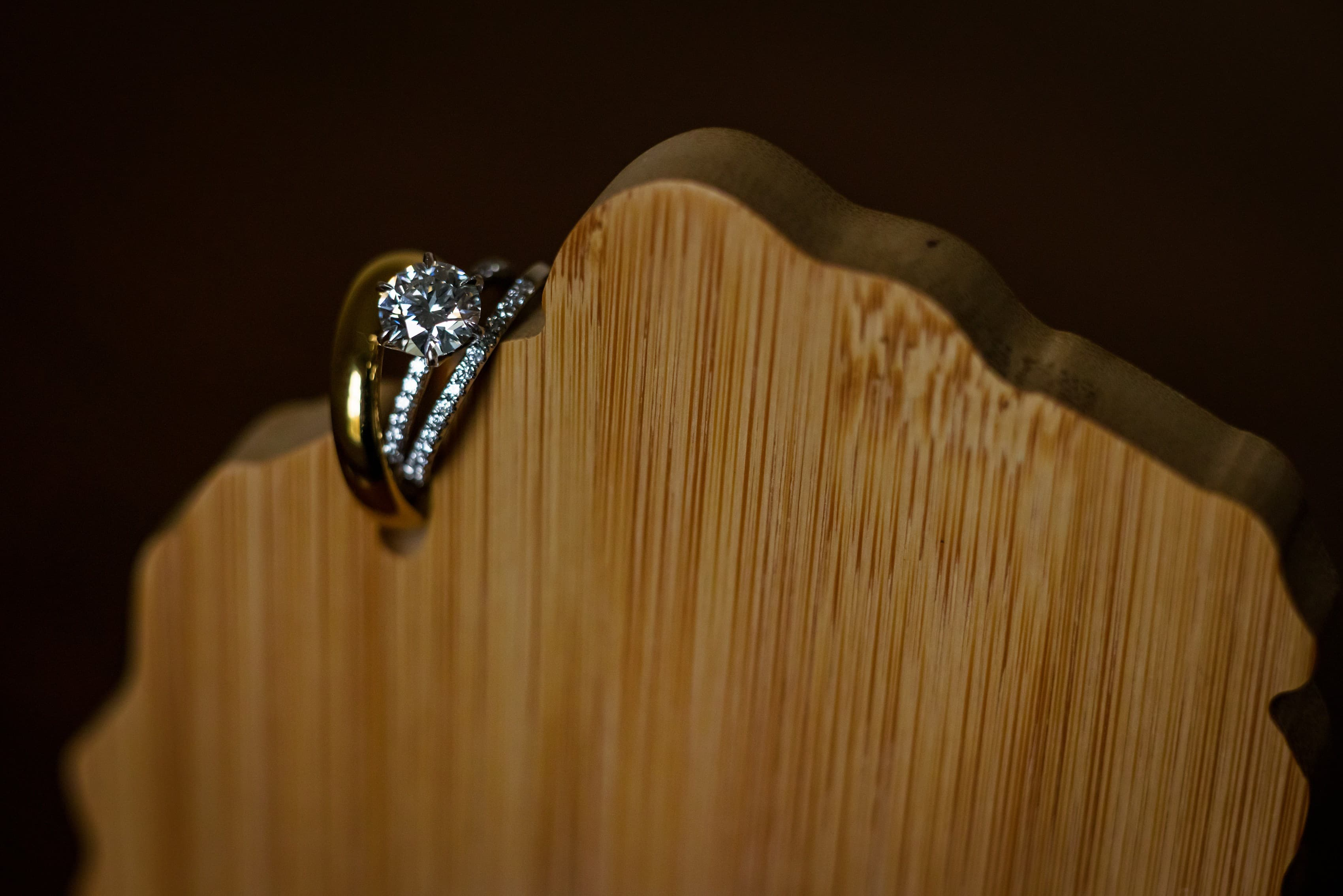 wedding rings are propped on wooden carving of michigan