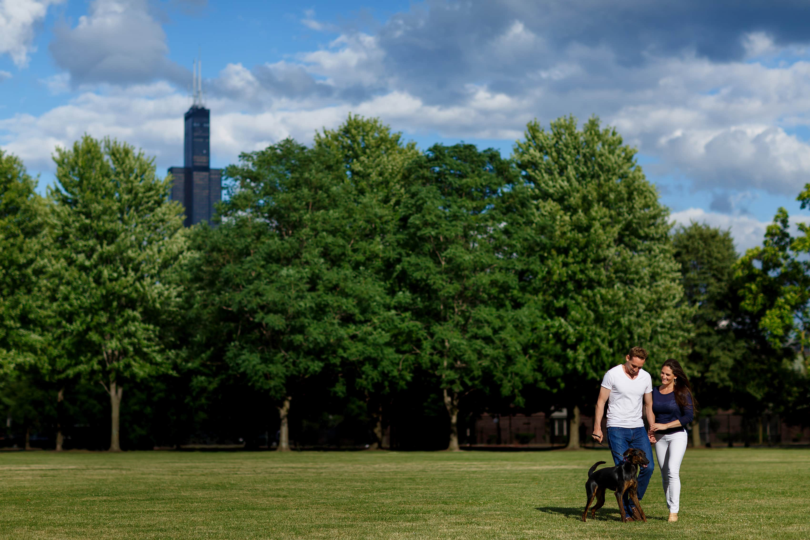 Couple walks through park in west loop Chicago with their dog during an engagement session with Sears Tower in the background