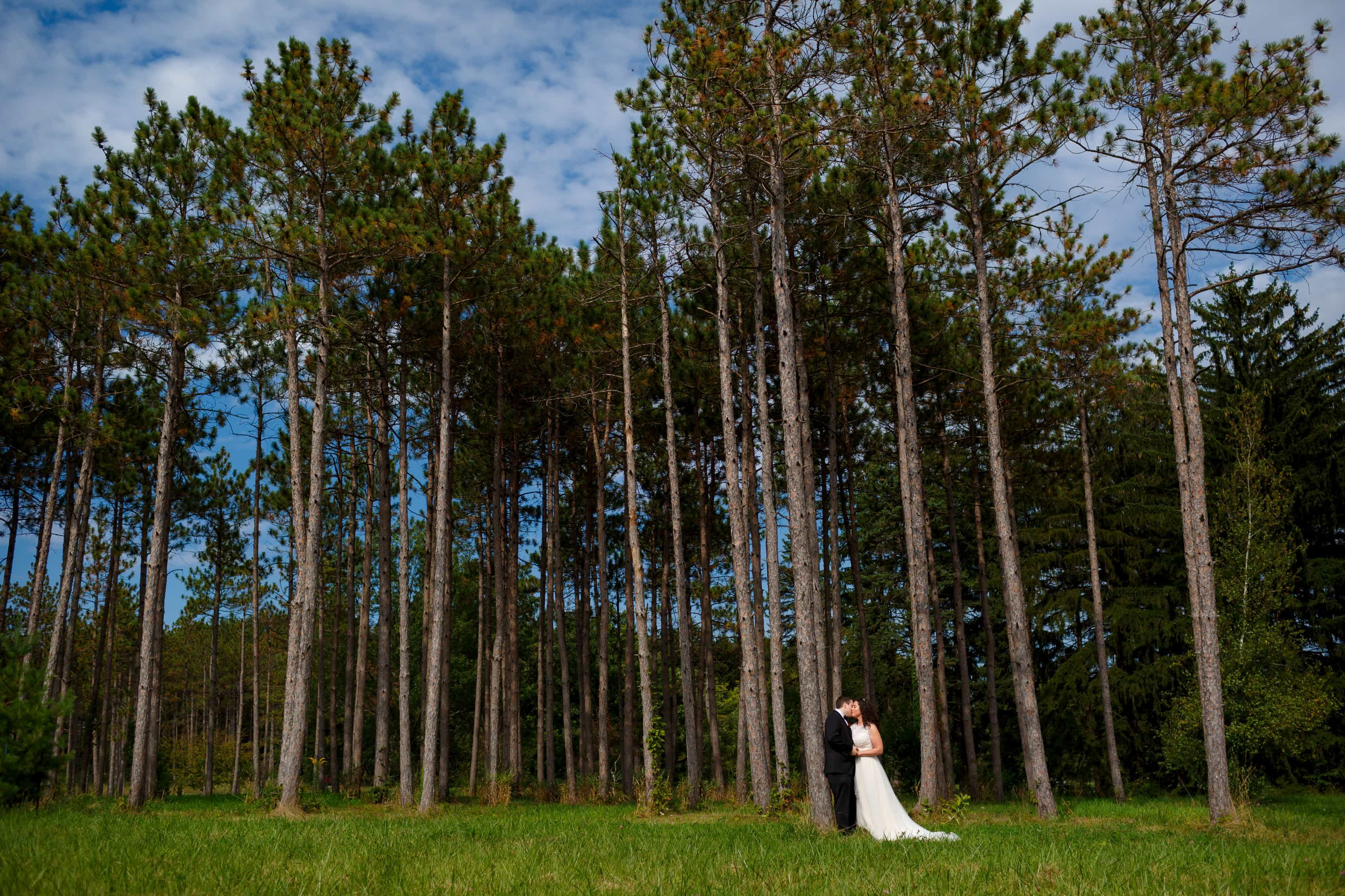 Lombard Westin Hotel Wedding Photos: Carna & Don