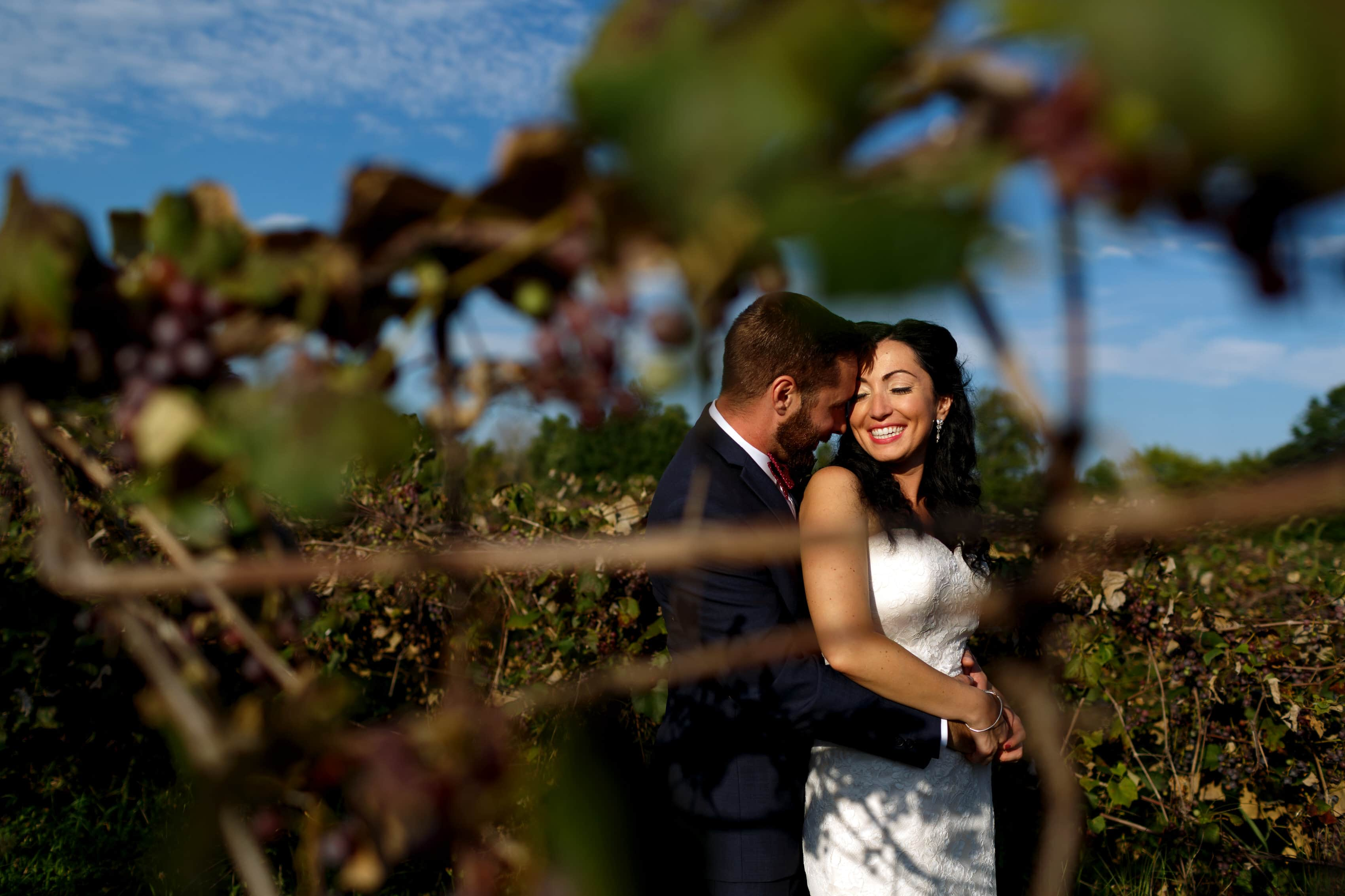 Caitlin & Matt: Willow Harbor Vineyards Wedding Photos