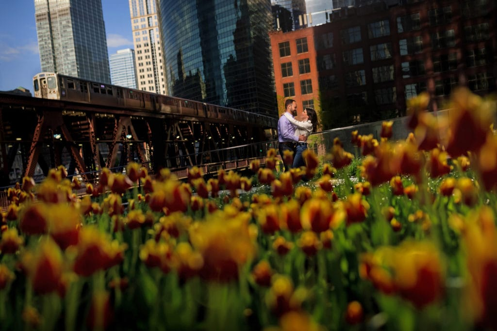 couple poses for engagement photos with El Train in background and Spring Flowers in forground near Chicago river at Wolf Point near Gibson's Italia